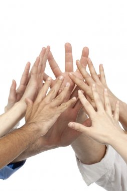 group of business holding hands