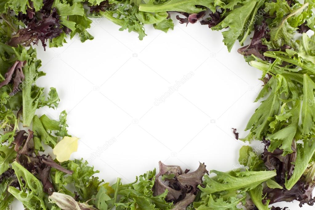 marco de ensalada verde fresca — Foto de stock © kozzi2 #17169587