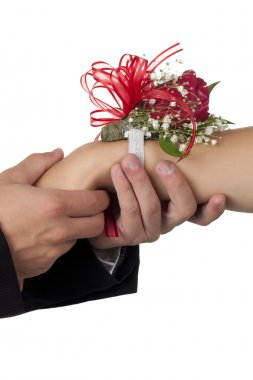 male hand holding a girl hand with rose corsage