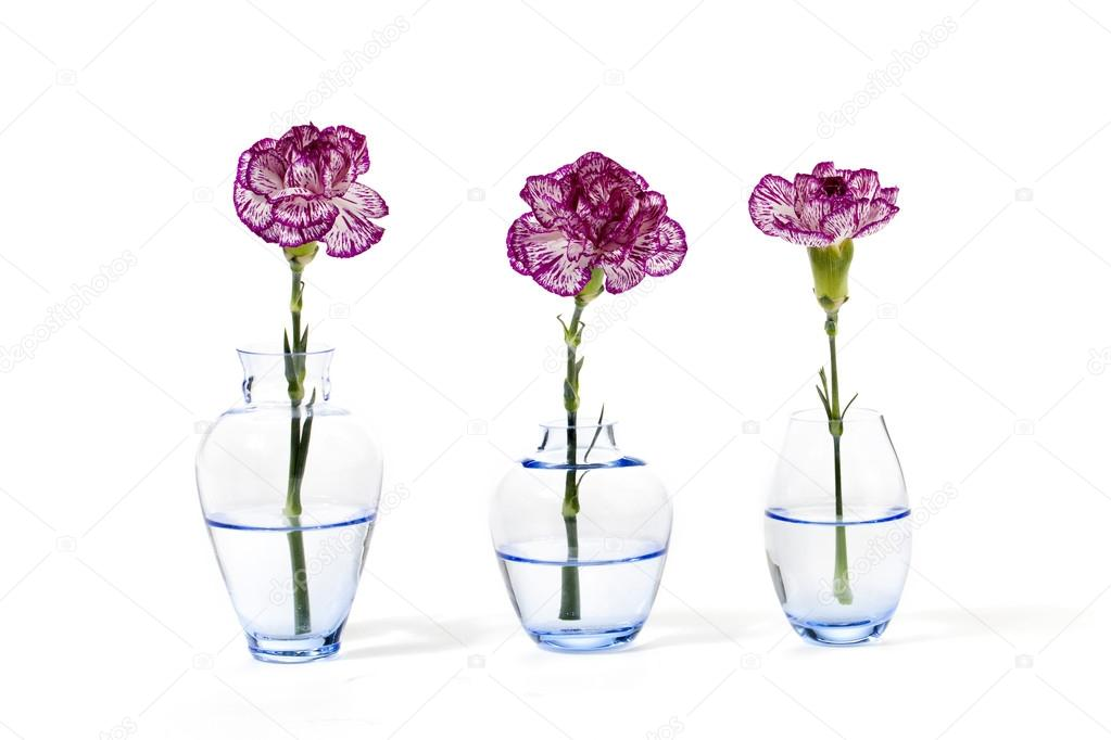 three flower vase with pink flowers