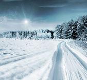 Zimní les. krajina