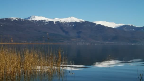 Lake, mountain peaks and reed plant
