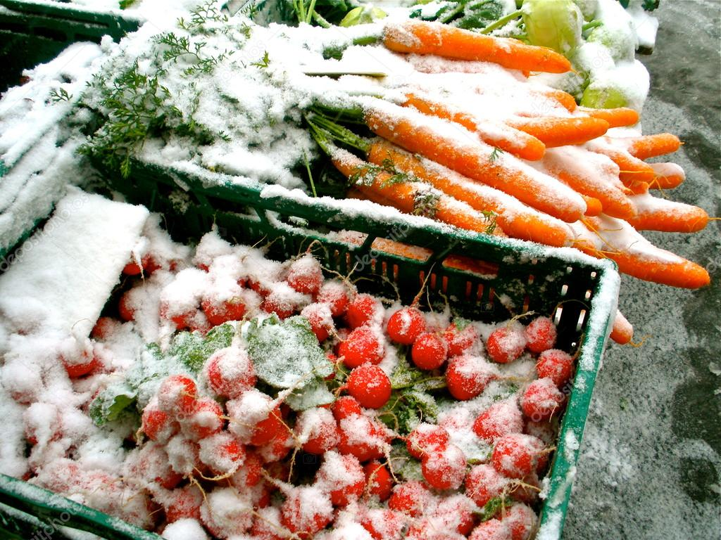 Snow on Vegetables