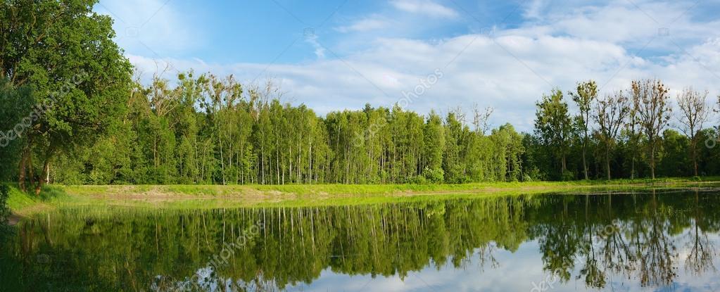 Panoramic view on Polish lake