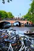 Amsterdam v létě