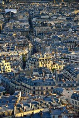 Paris architecture.