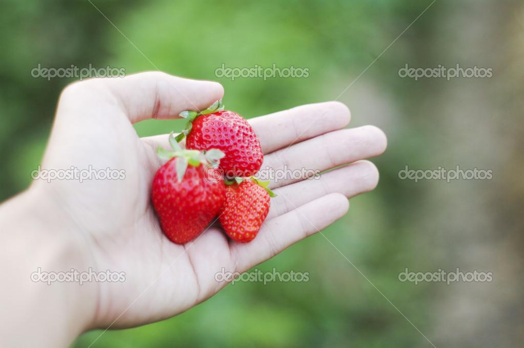 Fresh strawberries on hand