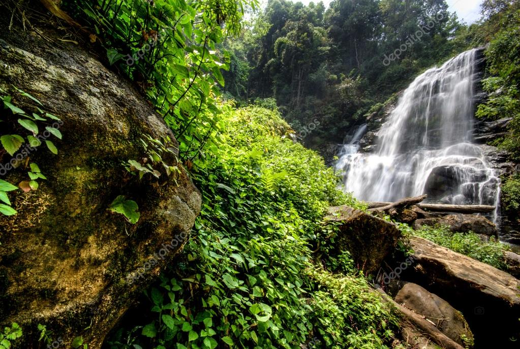Water fall in spring season located in deep rain forest jungle.