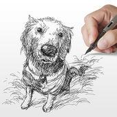 Fotografia cane documentalista dorato disegnato a mano