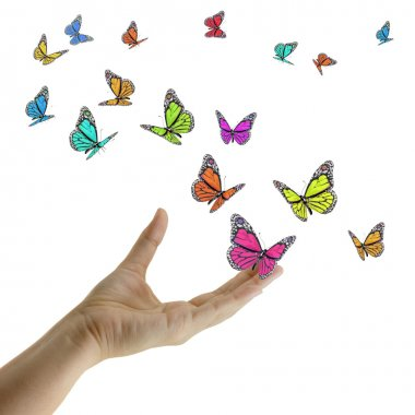 Hand releasing exotic butterflies.