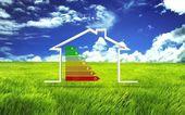 3D Abbildung des Hauses mit Energie-Effizienz-symbol