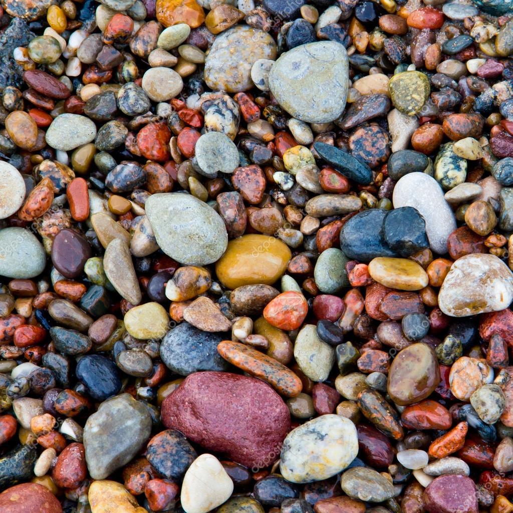 deniz taşları ile ilgili görsel sonucu