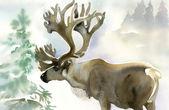Los v zimním lese