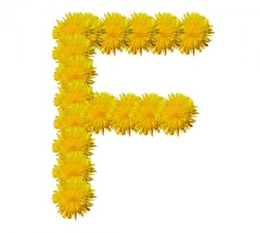 The alphabet from flowers