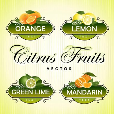 Citrus Fruits. Orange, lemon, green lime, mandarin