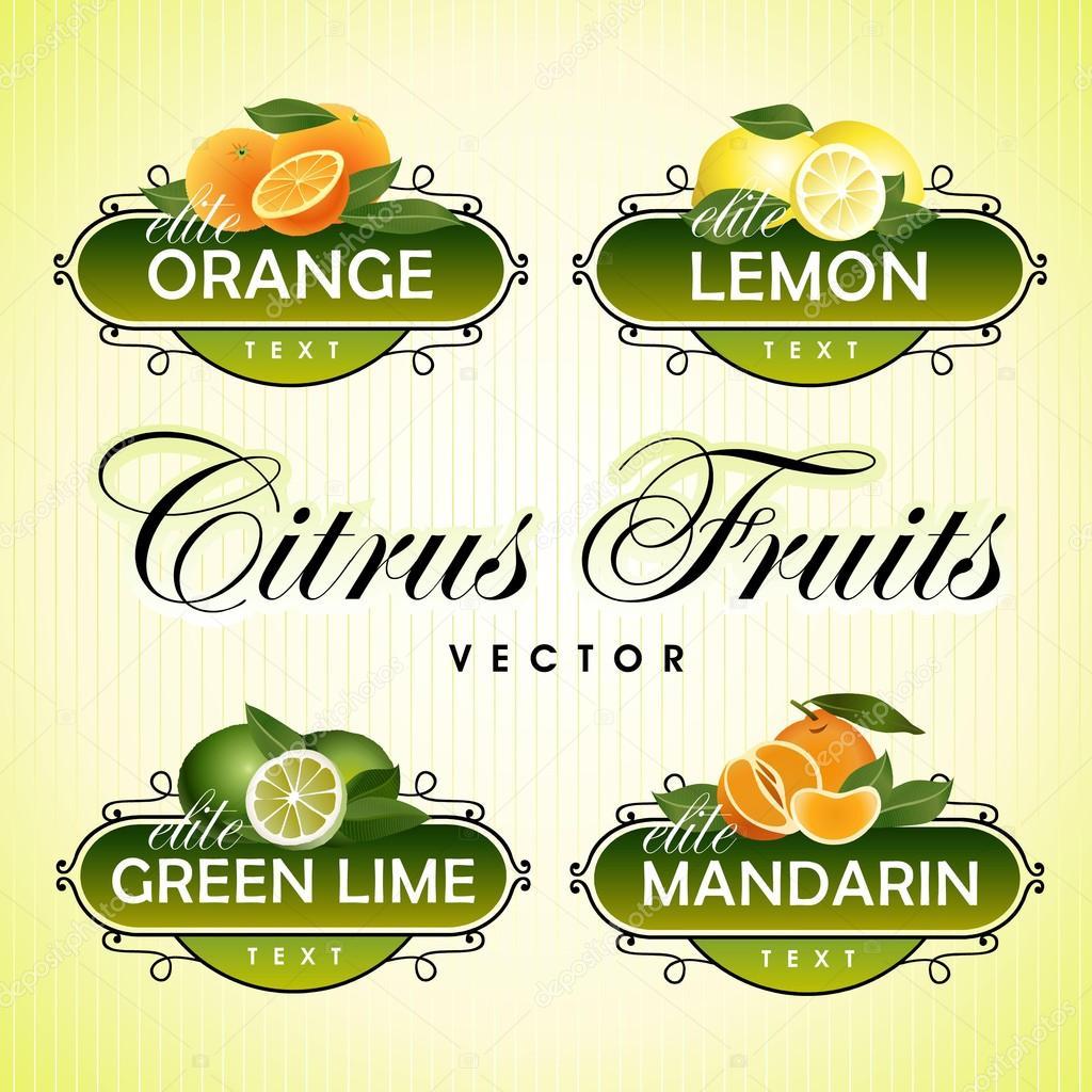 Citrus Fruits. Orange, lemon, green lime, mandarin