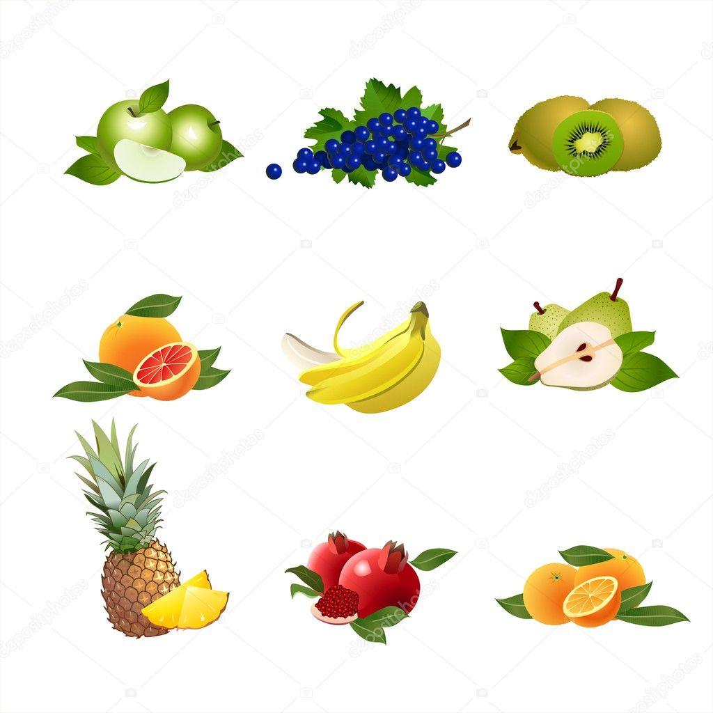 Fruits. Vector.