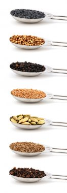 Herbs and spices measured in metal tablespoons