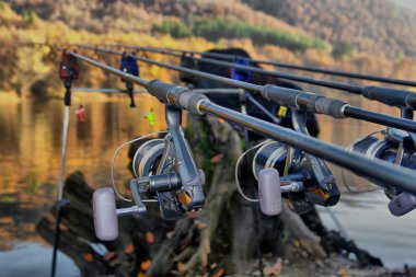 Fishing rods close up