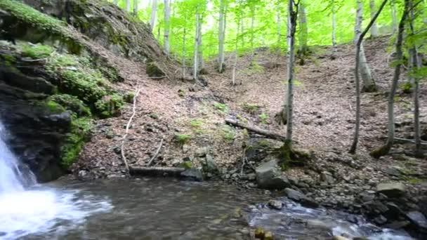 vodopád v lesní přírodní pozadí v hlubokém lese ekologické čisté prostředí, posouvání natáčení