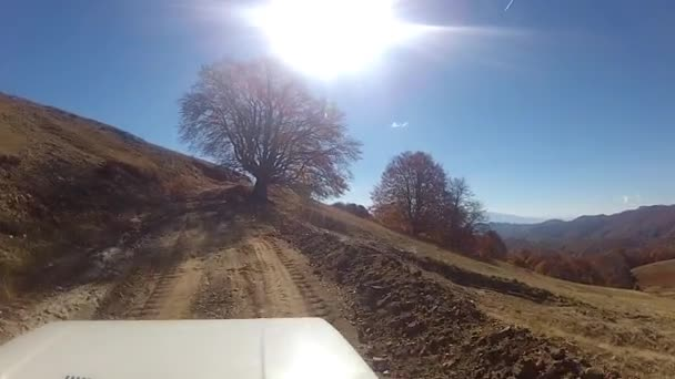 Dirt road driving
