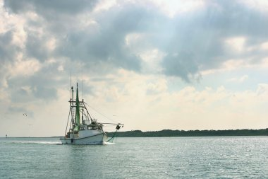 Shrimp boat returns from day of fishing