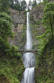 cascata alta con un ponte