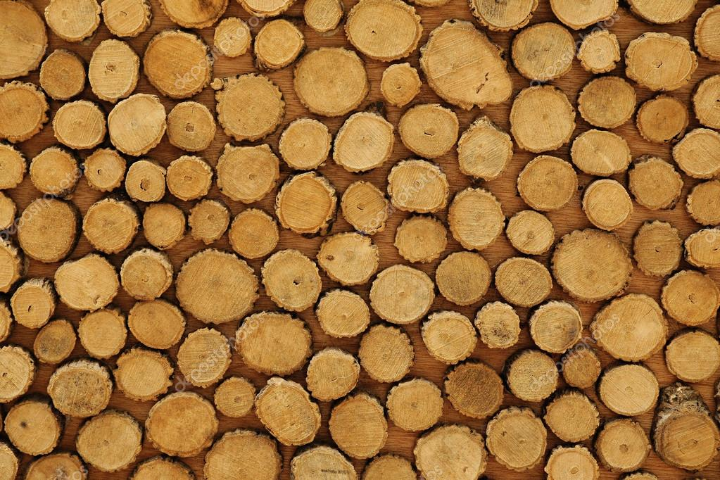 Cross-sectional view of timber logs