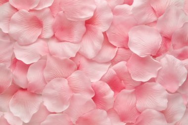 Backgorund texture of beautiful delicate pink rose petals in a random pile stock vector