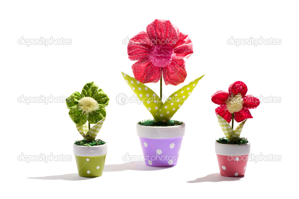 Ornamental potted flowers stock photo photology1971 21427203 ornamental potted flowers stock photo mightylinksfo