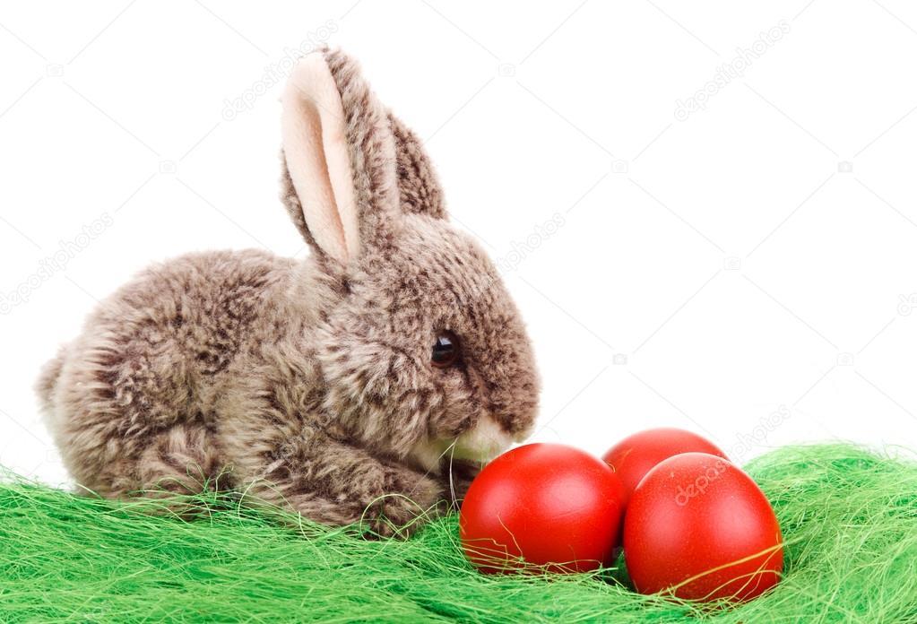 osterhase mit eiern — stockfoto © serkucher 43989331