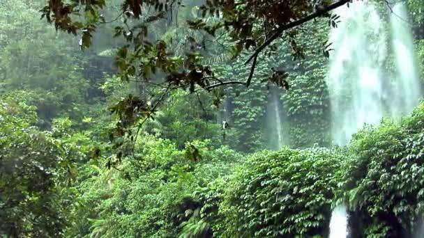 déšť vodopád džungle 10164