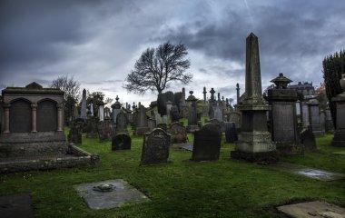 Spooky old graveyard in Stirling Scotland stock vector