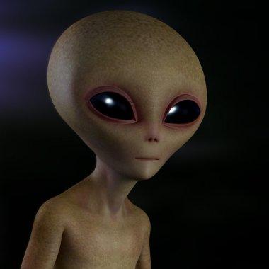 Extraterrestrial Alien