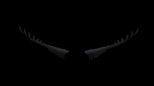 Černá angel wings