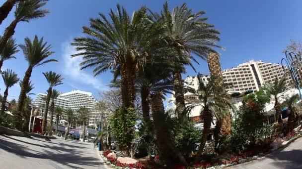 Skyline of Eilat: coastline, beach, hotels, promenade, mountains and bay
