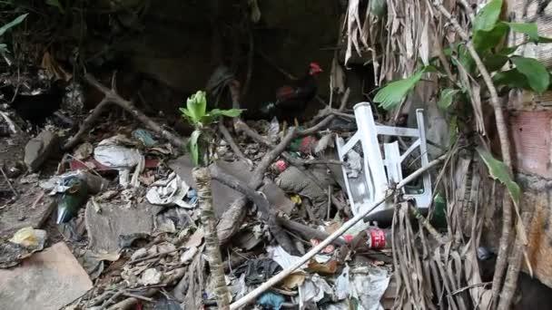 odpadky na ulicích favela rocinha, rio de janeiro, Brazílie