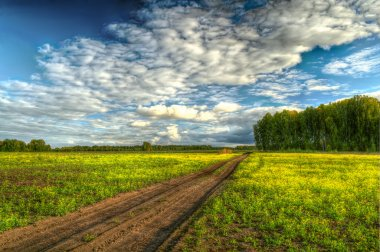 HDR image of straight dirt road