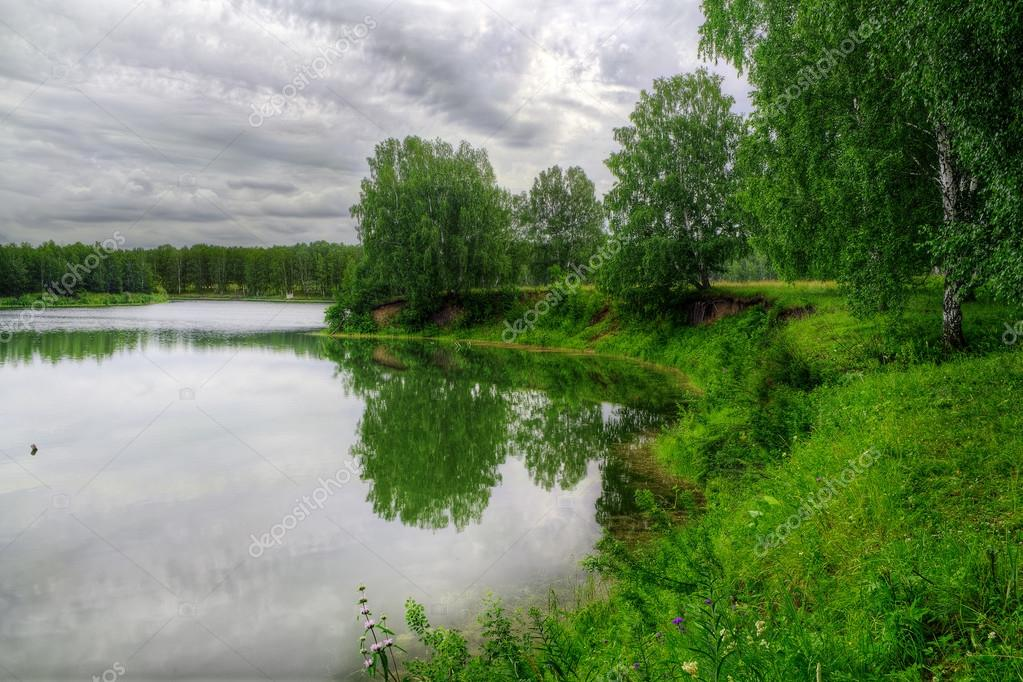 Summer landscape with forest and lake