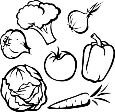 Vegetable illustration - black outline