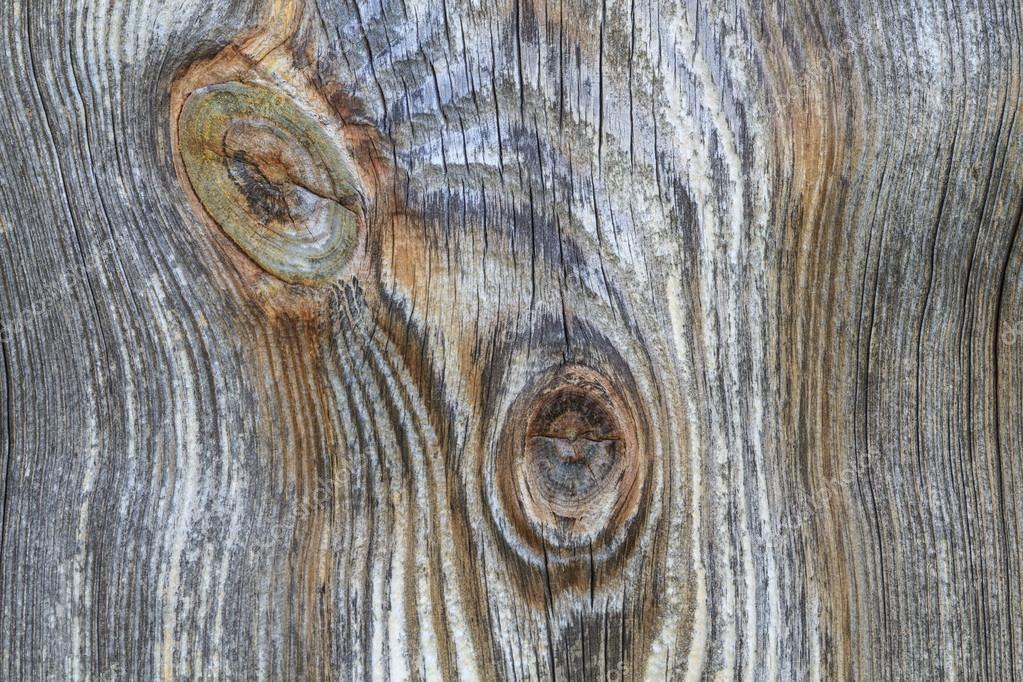 Planche de bois avec n ud de tronc de vieille branche for Vieille planche de bois