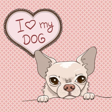 Vector card with cartoon fun chihuahua