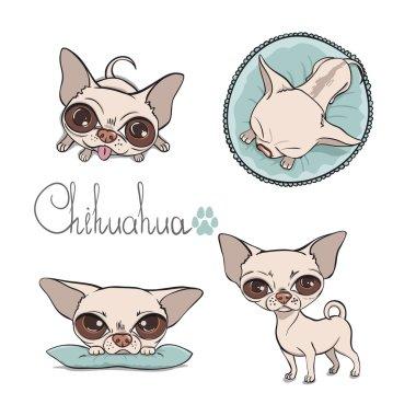 Vector chihuahua setŒ