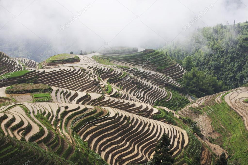 Guilin Longsheng terrace