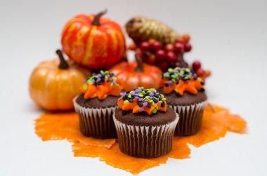 Halloween Cupcakes