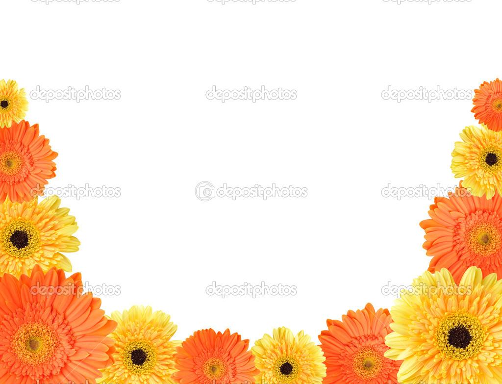 marco de Margarita amarillo y naranja — Foto de stock © Teerapun ...