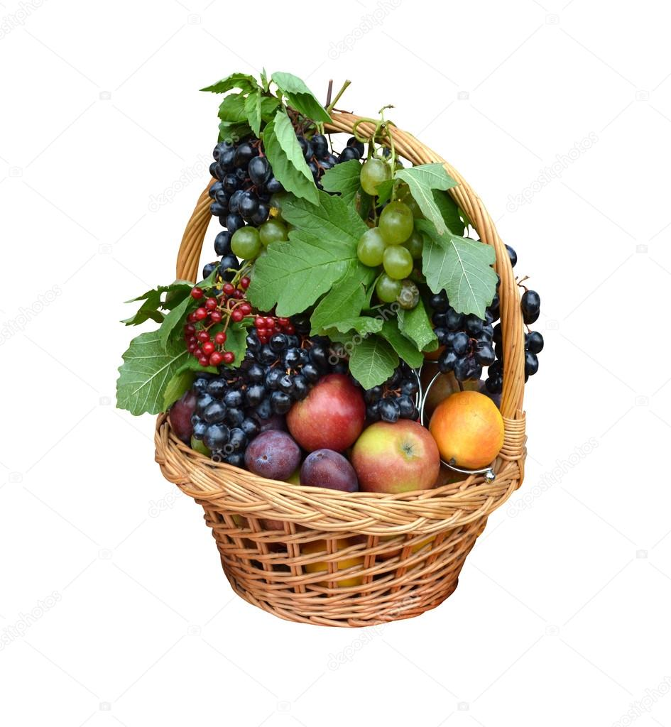 Fruit basket with apples, grapes, plums, cranberry