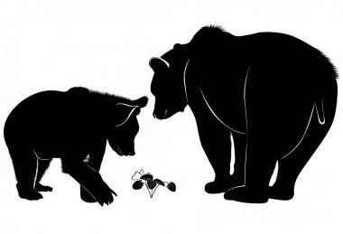 Bears looking for strawberries