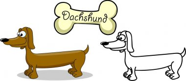 Set cartoon dogs of different breeds