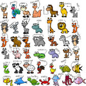 Fotografie Big set of cartoon animals